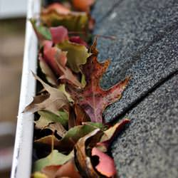 Clogged gutters filled with fall leaves  in Little Falls